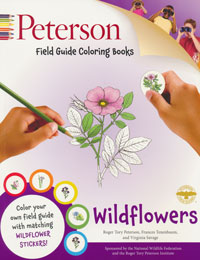 Wildflowers, Peterson Colouring Book