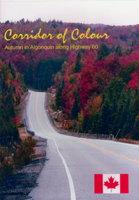 Corridor of Colour, Autumn in Algonquin Along Highway 60 DVD