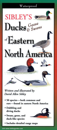 Folding Guide, Sibley's Ducks, Geese and Swans of Eastern North America