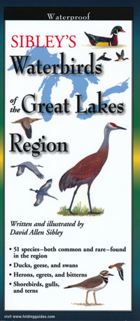 Folding Guide, Sibley's Waterbirds of the Great Lakes Region