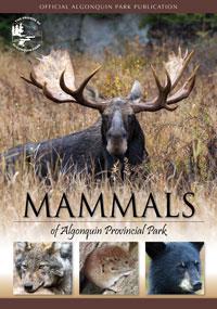 Mammals of Algonquin Provincial Park
