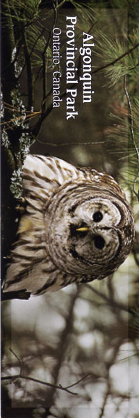 Bookmark - Barred Owl