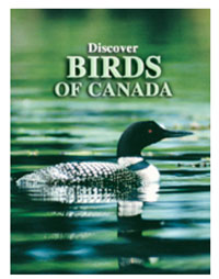 Birds of Canada Playing Cards