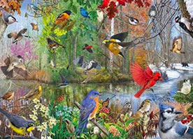 OUT OF STOCK/UNAVAILABLE Birds of the Season 1000 Piece Puzzle