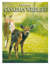 Canadian Wildlife Playing Card Deck
