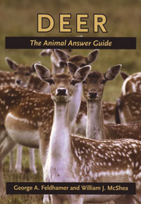 Deer, The Animal Answer Guide