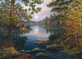 Deer Lake Puzzle
