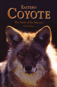 OUT OF STOCK/UNAVAILABLE Eastern Coyote