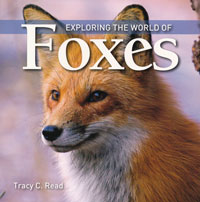 OUT OF STOCK/UNAVAILABLE Exploring the World of Foxes