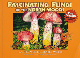 Facinating Fungi of the North Woods