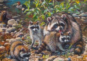 Raccoon Family Puzzle