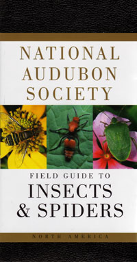 OUT OF STOCK/UNAVAILABLE Insects and Spiders, National Audubon Society Field Guide