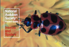 Insects and Spiders, Audubon Pocket Guide