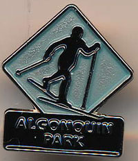 Cross Country Skier Lapel Pin