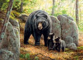 Mama Bear 1000 Piece Puzzle