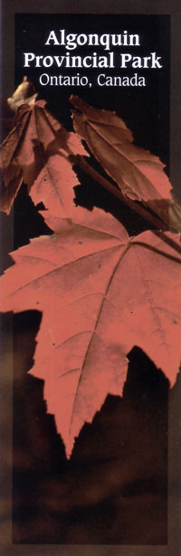 Bookmark - Red Maple