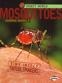 Insect World Mosquitoes