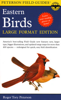 Large Print Eastern Birds