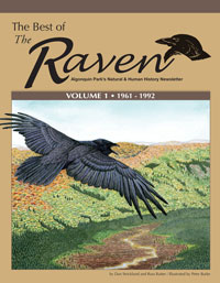 The Best of The Raven, Volume 1