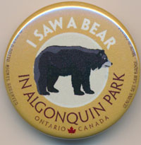 OUT OF STOCK/UNAVAILABLE I Saw a Bear See Saw Badge