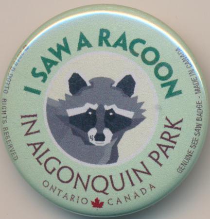 I Saw a Racoon See Saw Badge