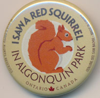 OUT OF STOCK/UNAVAILABLE I Saw a Squirrel See Saw Badge