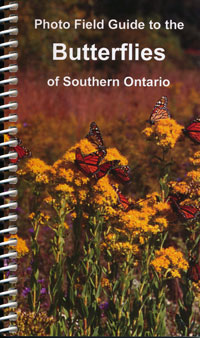Photo Field Guide to the Butterflies of Southern Ontario