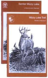 Mizzy Lake Trail