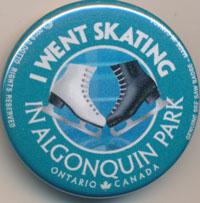 I Went Skating See Saw Badge