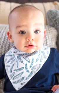 OUT OF STOCK/UNAVAILABLE Woodland Bib Set